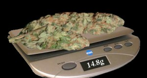 Weight-Weed