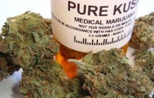 454-292-medical_marijuana1