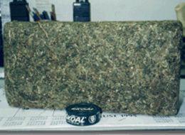 30-Pound-Marijuana-Brick[1]