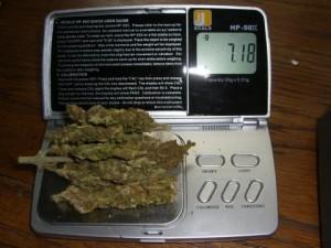 Quarter-Ounce-Marijuana-On-Scale